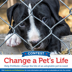 1-800-PetMeds Change a Pet's Life Contest
