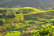 Book Tours to Sapa with smiletravelvietnam.com
