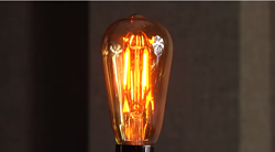 LED Edison Bulbs