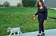 Walks become workouts with Vivir