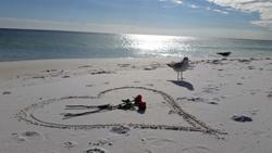 Valentine's Day Floridas Beach Vacation