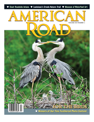 American Road magazine, Creole Nature Trail, Louisiana, Yard Birds, Washington, Peabody Hotel, Memphis, Tennessee, Wakodahatchee Wetlands, Florida, road trip, byways, birding