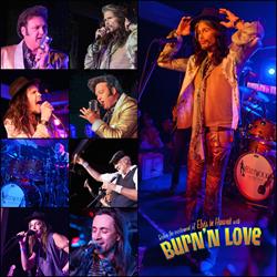 Mick Fleetwood, Steven Tyler, Burn'n Love