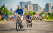 DoggerJogger, the New 'Hardware-less' Bicycle Dog Leash,...