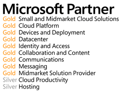 Agile ITs Microsoft Partner Competencies