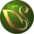 Cygnet Media Group Celebrates a Successful Year in Book Publishing and Promotion!