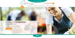 Costa Farms website, Costa plants, houseplants website