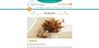 Plant finder, houseplant finder, Costa Farms website