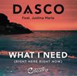 "Dasco's New EDM Single ""What I Need (Right Here, Right Now)"" Now Available via Radikal Records"