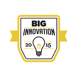 Business Intelligence Group's BIG Innovation Award logo