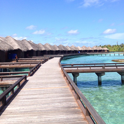 Maldives over water bungalow