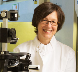 Dr. Marie Csete President and Chief Scientist of HMRI
