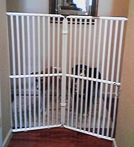 The World S Tallest Pet Gate Now Available From Rover Company