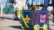 Shreveport-Bossier's Krewe of Barkus and Meoux Pet Parade Set for...