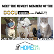DocuCopies.com Donates $1K to Home For Life and Sponsors Three Animals