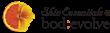Skin Essentials @ bod:evolve logo