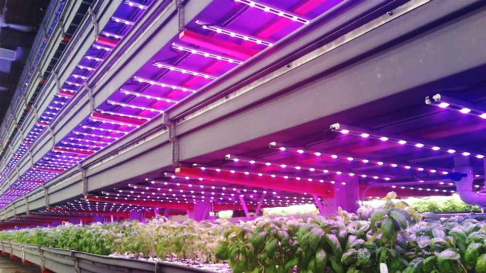 Thousand Plus Illumitex Lights Installed At Innovative