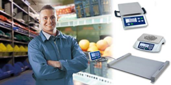 METTLER TOLEDO's Industrial Basic Scales provide accurate and reliable weighing with industrial scales for a wide range of applications.