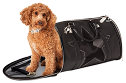 Dog Carrying Bag