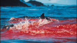 Blood in the Water: 5 Steps to Avoiding Background Check Litigation
