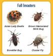 Brush Up on Pest Management Activities this Winter