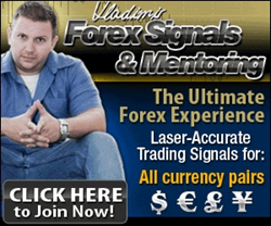 Forex Triple B Vladimir Ribakov