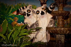 Alice Farley Dance Theater's 'enchanted lemur performers' image by Kim Longstreet at Dogstreet Photography