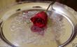 Martin Mason Hotel Deadwood South Dakota Bachelor Rose