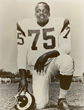 Deacon Jones Foundation Presents NFL Art Charity Program Benefiting...