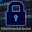 DDoS Protected Servers