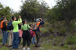 Island Discovery Tour with Hawaii Forest & Trail
