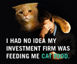 Hedgeable Challenges Wall Street With Cat Food Campaign