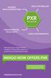 INDIGO Biosciences Now Offers PXR