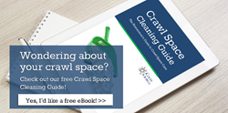 crawl space cleaning guide free download