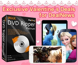 Valentine's Day Sales for DealNews