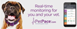 New PetPace App for Android Puts Health Monitoring in Pet Owners' Back...