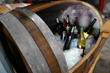 Full-size wine barrels were used to create custom wine coolers and storage compartments.