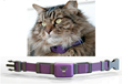 PetPace Introduces New Health Monitor Collar for Cats