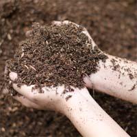 Asbestos Found in Nevada Soil