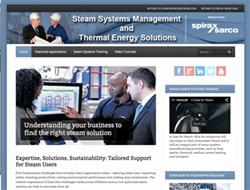 Steam Systems Management
