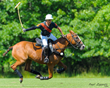 "BG Polo Vero Beach Polo Club Hosts ""Special Equestrians"" Fundraiser"