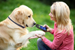 High Tech Pet - Dog Training Collars for A New Generation of Pet Owners