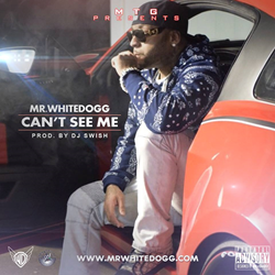 Mr. WhiteDogg - Can't See Me