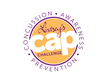 Lindsey Berman's #CAPChallenge: Concussion Awareness and Prevention