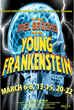 The New Mel Brooks Musical Young Frankenstein Performance March...