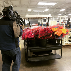 CEO delivers roses to employees via golf cart