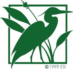 Environmental Services, Inc.