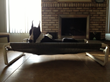 Indoor Large Pet Cot