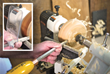 Woodcraft is Now a Full-Line Dealer for Easy Wood Tools