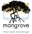 Mangrove Software Successfully Completes SSAE16 SOC 1 Type 2 Audit